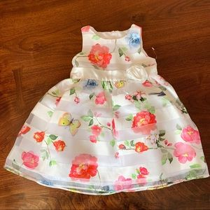 Spring Floral Dress 18 Mo Butterfly Tulle Ladybug